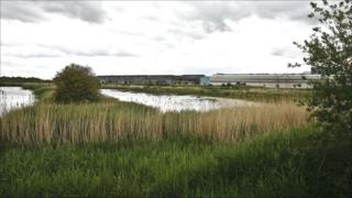Shotton Works Nature Reserve is part of the steelworks site