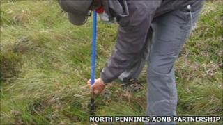 Survey work is being undertaken on an area of peat bog in Cumbria