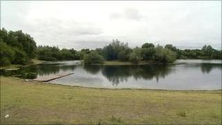 Burton Riggs Nature Reserve at Seamer