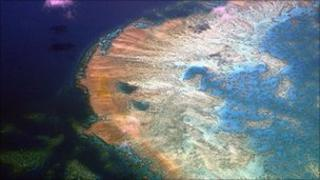 The Great Barrier Reef, file pic