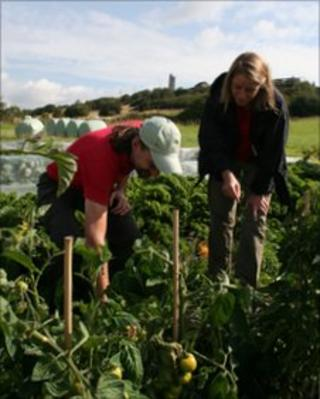 Brian Lavell and Kim Warren look at the vegetables