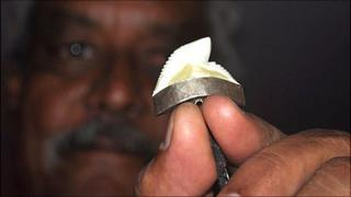 A fisherman holds up a shark's tooth
