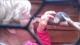 Anne Wright with one of her cockatiels