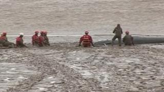 Rescuers trying to free the stranded whale calf on Tuesday