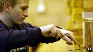 Apprentice bricklayer