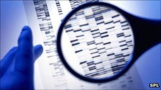 Generic image of a DNA autoradiogram
