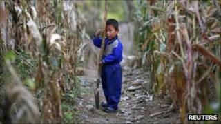 A North Korean boy holds a spade in a cornfield damaged by recent floods and typhoons, in the Soksa-Ri collective farm, South Hwanghae province on 29 September 2011. The photo was taken on a government-controlled tour