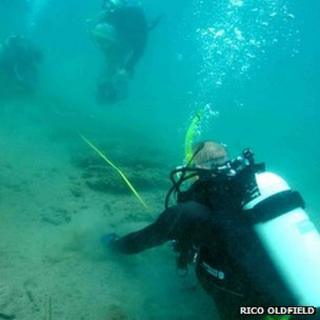 Divers at the site in Panama