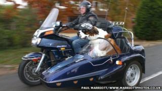 Alan Valkeith with Harley, a St Bernard