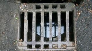 Gully (drain) cover