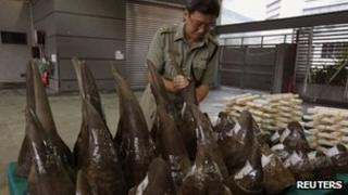 Lam Tak-fai, acting head of Ports and Maritime Command, arranges rhino horns, part of a 33 rhino horns, ivory chopsticks and bracelets shipment seized by the Hong Kong Customs and Excise Department