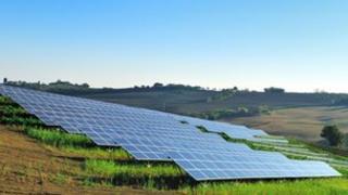Solar meadow