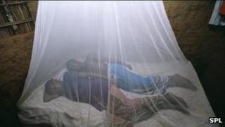 People sleeping under a malaria net