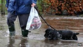 Man walking his dogs through flooding near Bridge of Allan