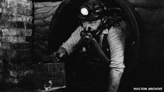 A miner with a canary at Dinas in the Rhondda in 1965