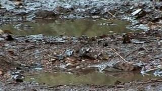 Benfleet potholes