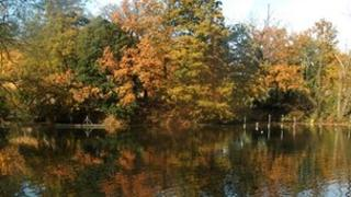 trees with leaves changing colour reflected in a lake