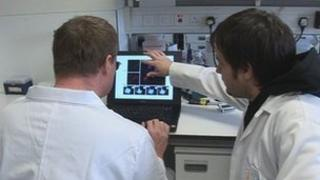Scientists at the Babraham Institute in Cambridgeshire