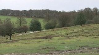 Areas of Outstanding Natural Beauty (AONB) in the Quantocks, Somerset