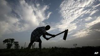 India farmer