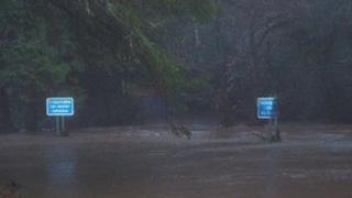 Cardinham Woods during the November 2010 floods