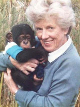 Margaret Jackson and a baby chimpanzee