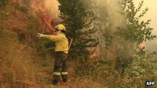 A fireman fights a massive forest fire affecting the commune of Quillon in Chile's Bio Bio region, some 500 Km south of Santiago, on 2 January 2012.