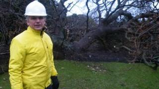 Dr Ian Edwards and a fallen oak tree