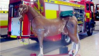 Wooden horse and fire engine