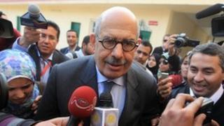 Mohamed ElBaradei (file photo - 15 December 2011)