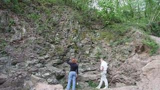 Huntley Quarry Geology Reserve, Gloucestershire