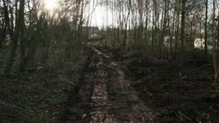 New footpath in a copse