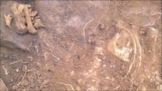 Bones discovered on Milton Keynes building site