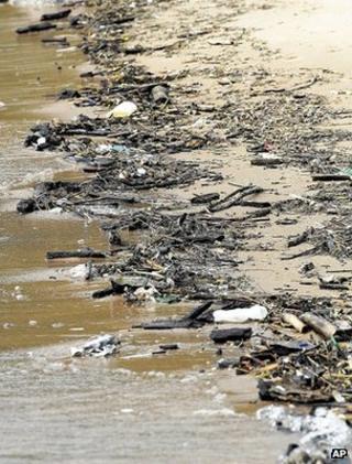 Debris on shoreline (Image: AP)