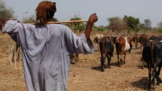 File photo of cattle farmer in South Sudan