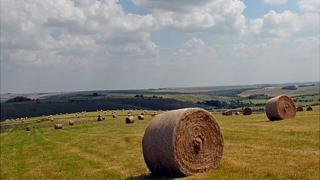 Bales of hay in Wiltshire, UK - file pic