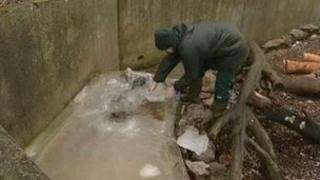 Frozen water trough