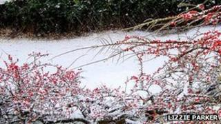 Snowy scene on the Dorset-Wiltshire border