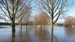 A flooded Admirals Park in Chelmsford in January 2011