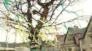 Jubilee oak in Radstock