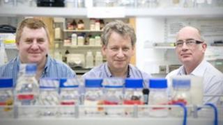 Professors Gordon Brown, Neil Gow and Al Brown