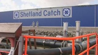 Shetland Catch factory