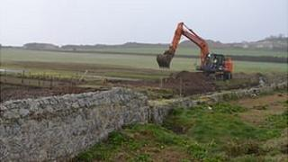 Work at the Colin Best Nature Reserve in Guernsey