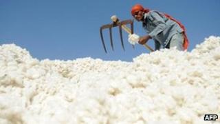 A worker sorts cotton in Gujarat in December 2011