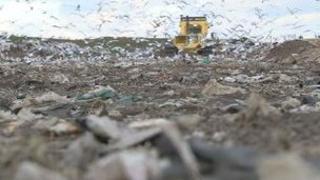 Guernsey waste