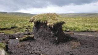 Peat erosion, high fells, Lake District. Photo: Cumbria Wildlife Trust