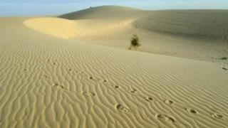 Sahara Desert, Mali