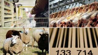 Shopping basket, meat in abattoir, sheep, barcode
