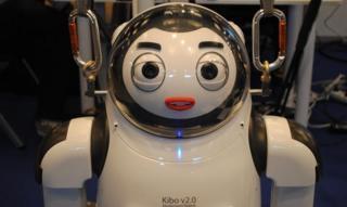 Kibo robot