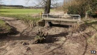 The dried-up River Pang near Bucklebury, Berkshire